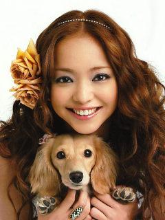 安室奈美恵|犬と音楽好き - ameblo.jp